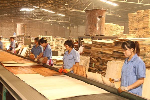 Plywood 6-3